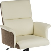 Elegant Executive Office Chair Medium Back