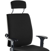 Ergonomic Chair T24PU With Arms And Headrest.
