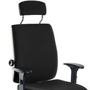 Ergonomic Chair T24P With Arms And Headrest