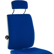 Ergonomic Chair T24PU With Headrest