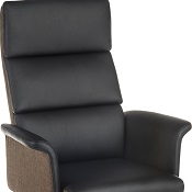 Elegant Executive Office Chair High Back
